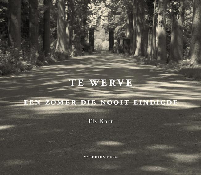 TeWerve
